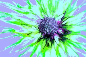Abstract Flower is gemaakt met alcoholinkt